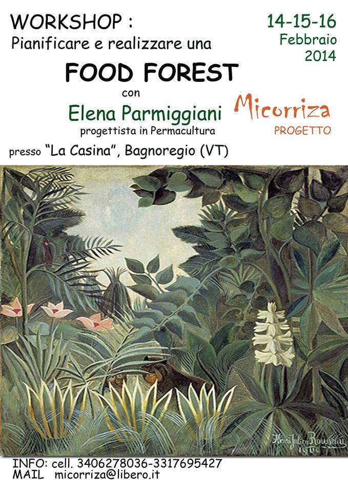 corso fforest