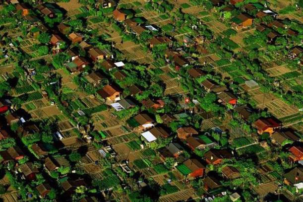 "This is called ""Foodscaping"" Geneva, Switzerland. Each yard is a vegetable garden and neighbors consult and plan what each will grow so they can trade. Imagine if we did this everywhere?"