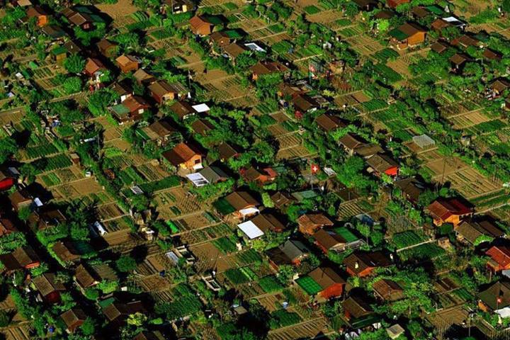 """This is called """"Foodscaping"""" Geneva, Switzerland. Each yard is a vegetable garden and neighbors consult and plan what each will grow so they can trade. Imagine if we did this everywhere?"""
